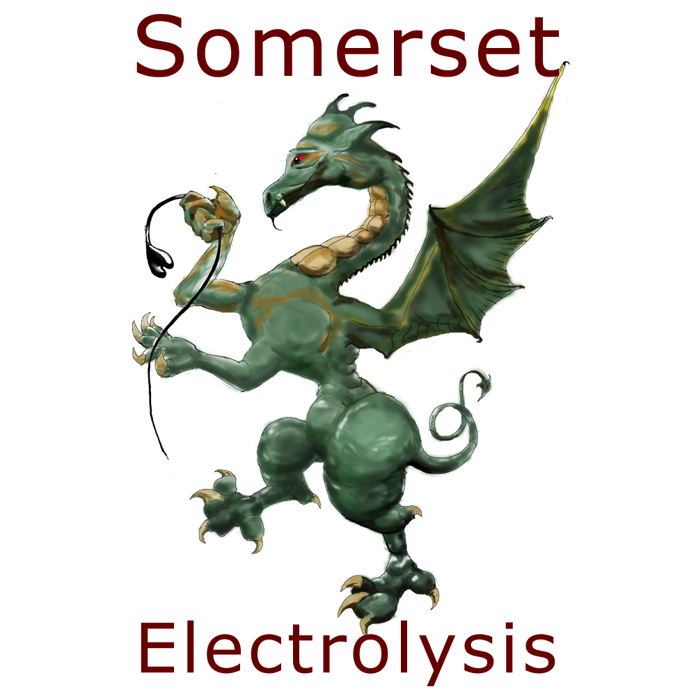 Somerset Electrolysis