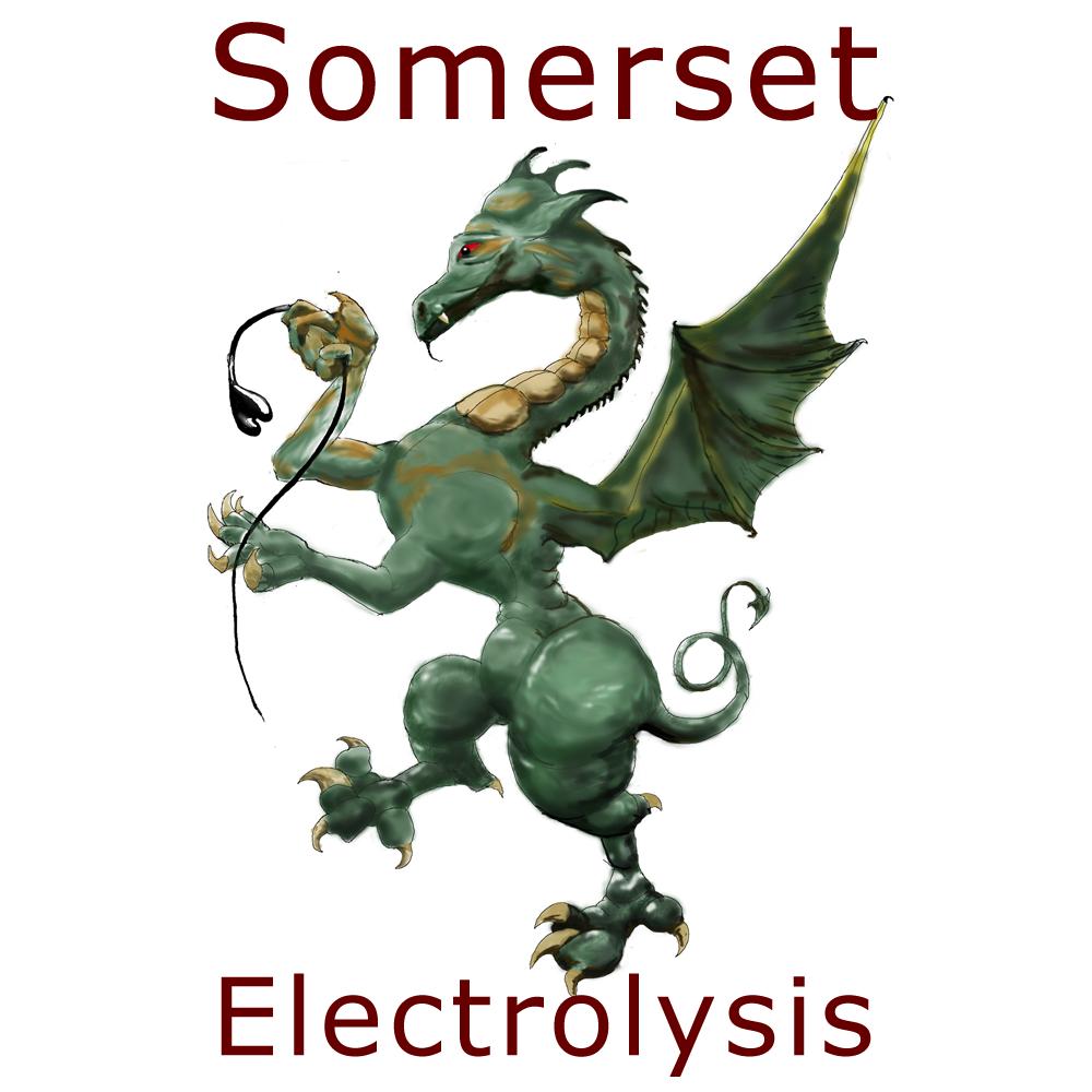 Somerset Electrolysis